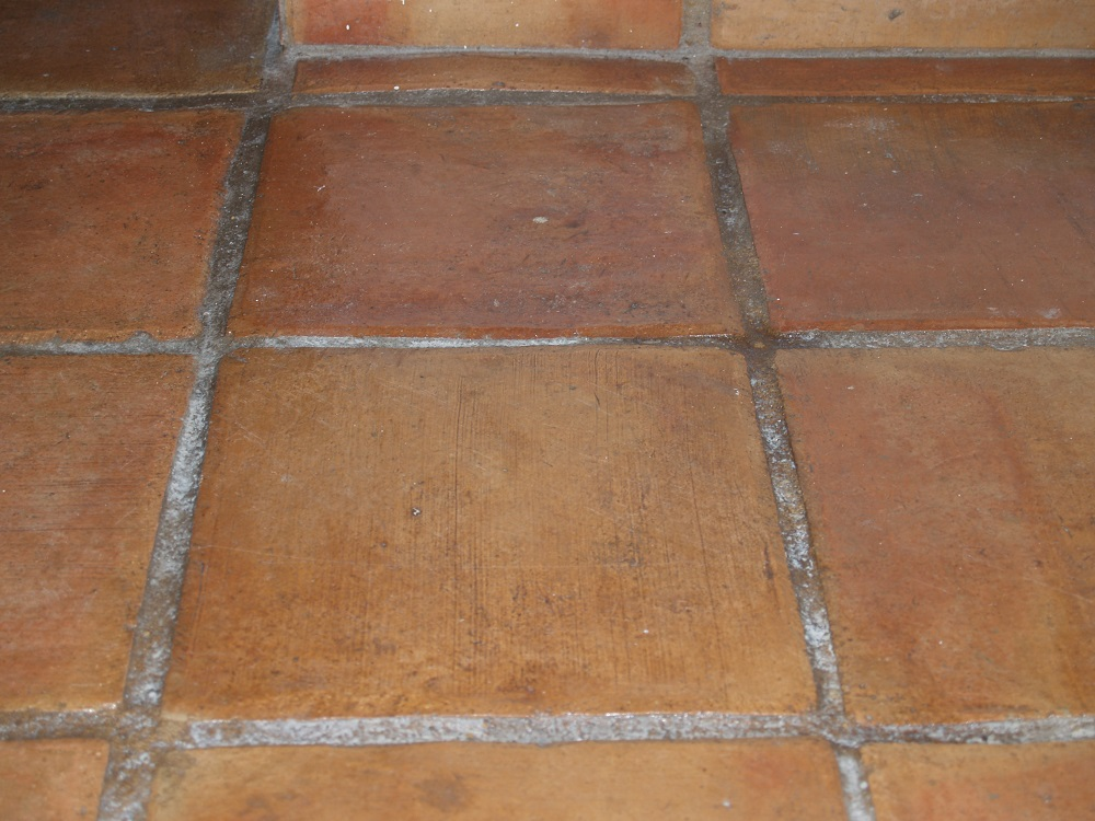 Terracota Floor Wax Stripping And Waxing